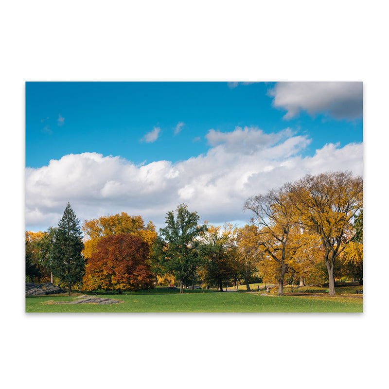 Central Park Autumn Color NYC Metal Art Print