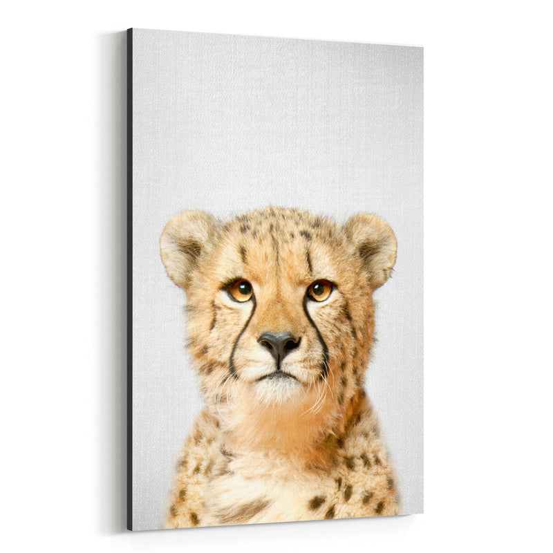 African Cheetah Peekaboo Animal Canvas Art Print