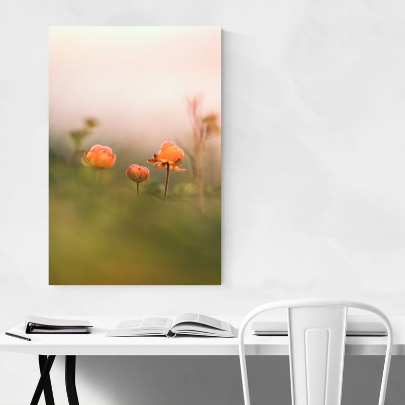 Tydal Norway Cloudberries Metal Art Print