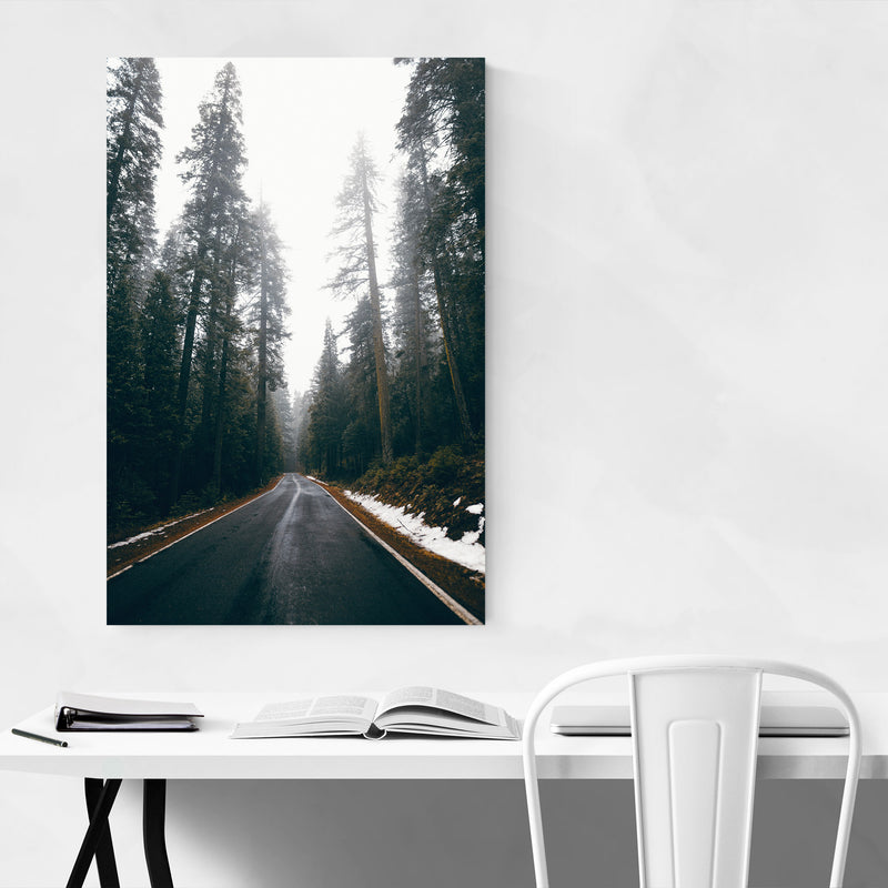 Lassen Volcanic Park California Canvas Art Print