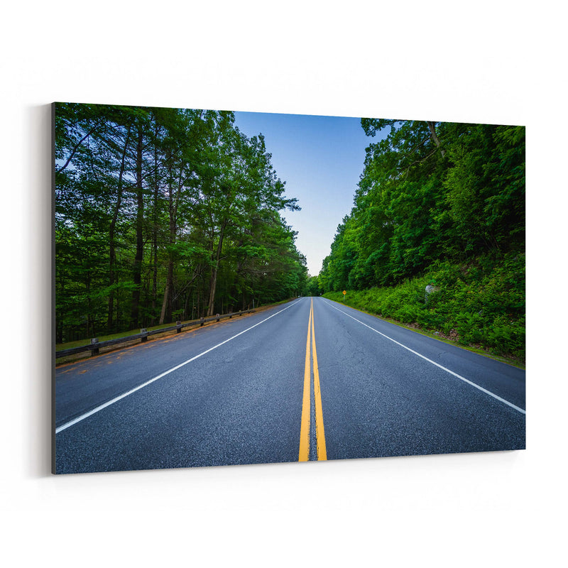 New Hampshire Forest Road Canvas Art Print
