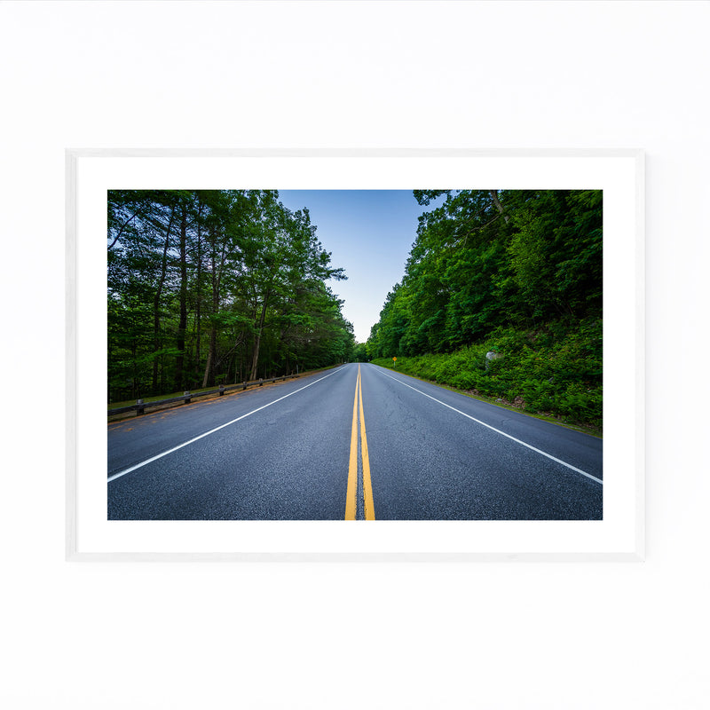 New Hampshire Forest Road Framed Art Print