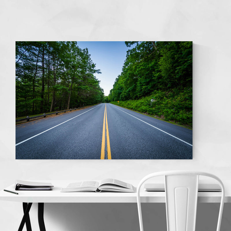 New Hampshire Forest Road Art Print
