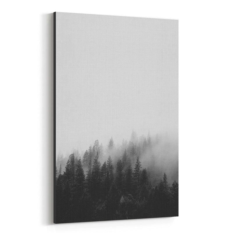 Fog Pine Trees Forest Woods Canvas Art Print