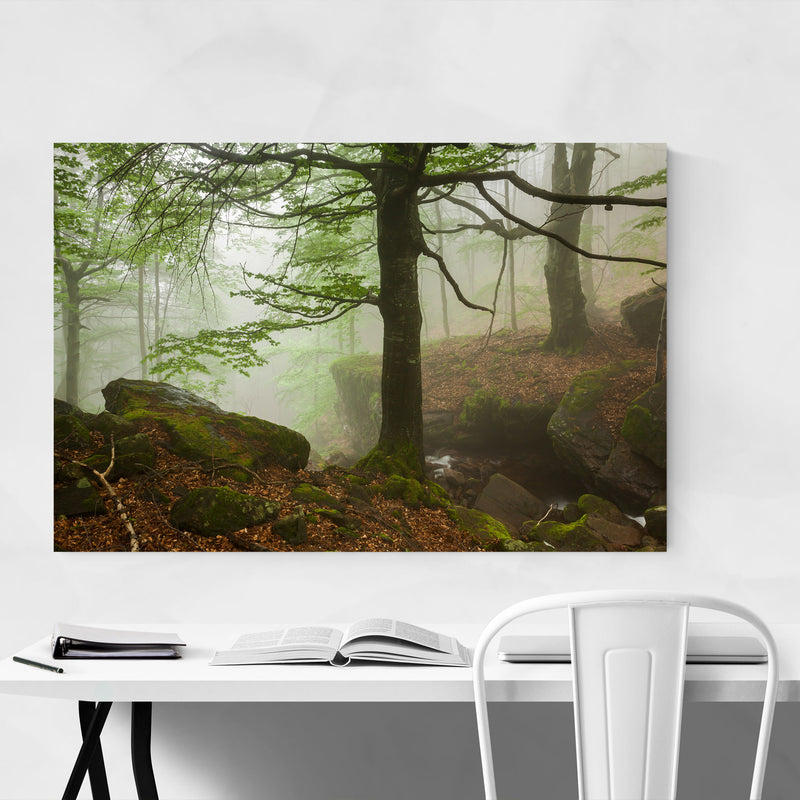 Bulgaria Forest Landscape Nature Metal Art Print