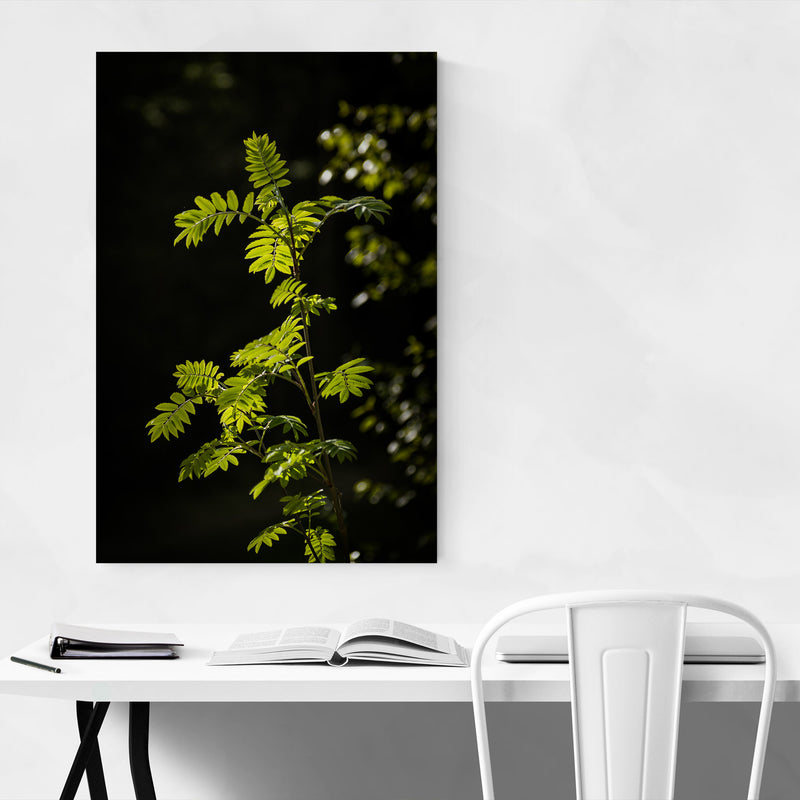 Forest Plants Lush Nature Green Art Print