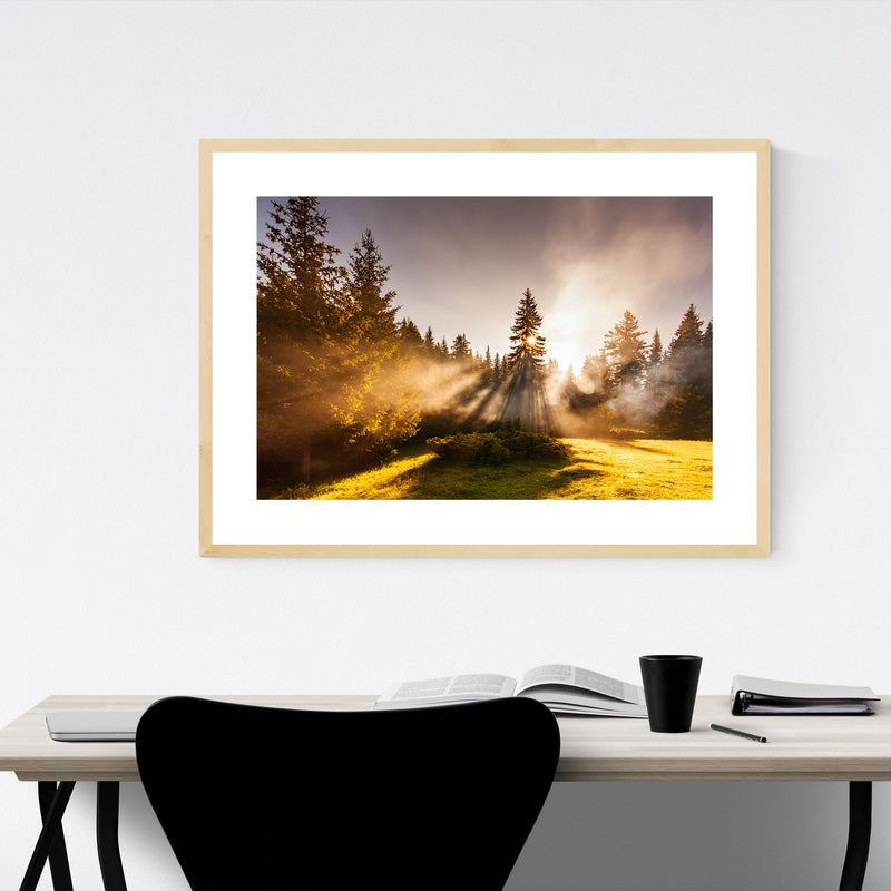 Batak Bulgaria Pine Trees Sun Framed Art Print