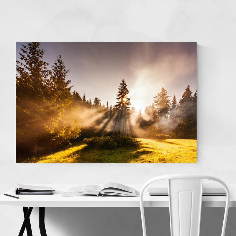 Batak Bulgaria Pine Trees Sun Canvas Art Print