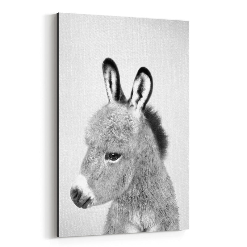 Donkey Peekaboo Nursery Animal Canvas Art Print