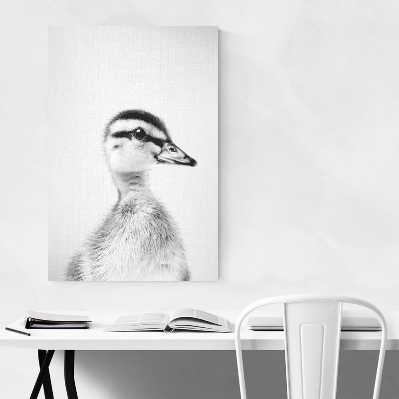 Cute Baby Duckling Peekaboo Animal Canvas Art Print