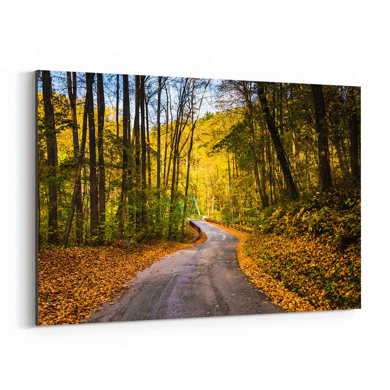 Winding Road Fall Autumn Leaves Canvas Art Print