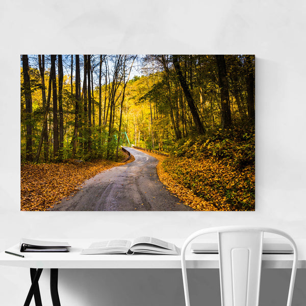 Winding Road Fall Autumn Leaves Art Print