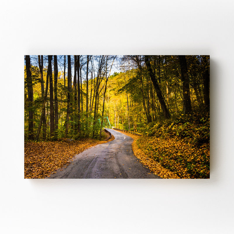 Winding Road Fall Autumn Leaves Mounted Art Print