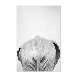 African Elephant Peekaboo Animal Art Print