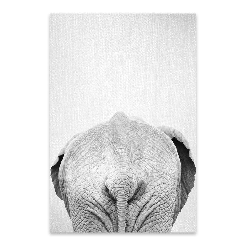 African Elephant Peekaboo Animal Metal Art Print