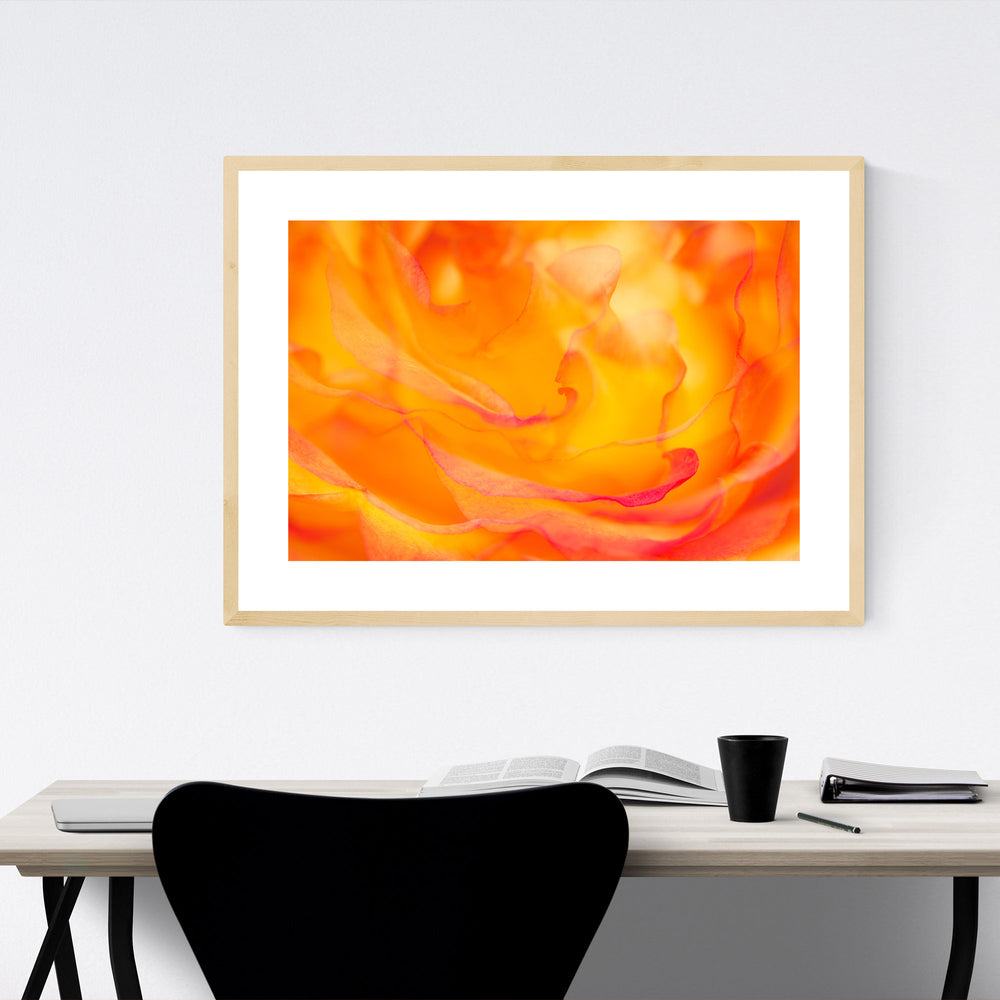 Abstract Rose Digital Art Floral Framed Art Print