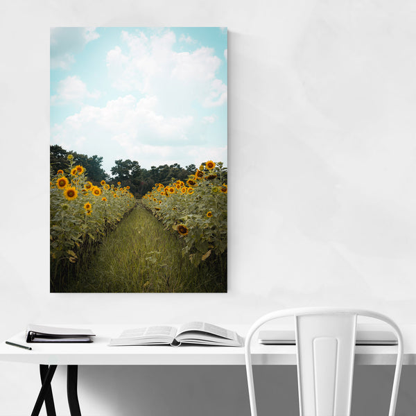 Sunflower Field Farm Louisiana Art Print