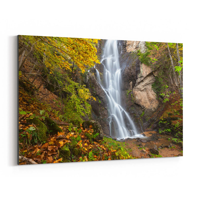 Bulgaria Autumn Forest Waterfall Canvas Art Print