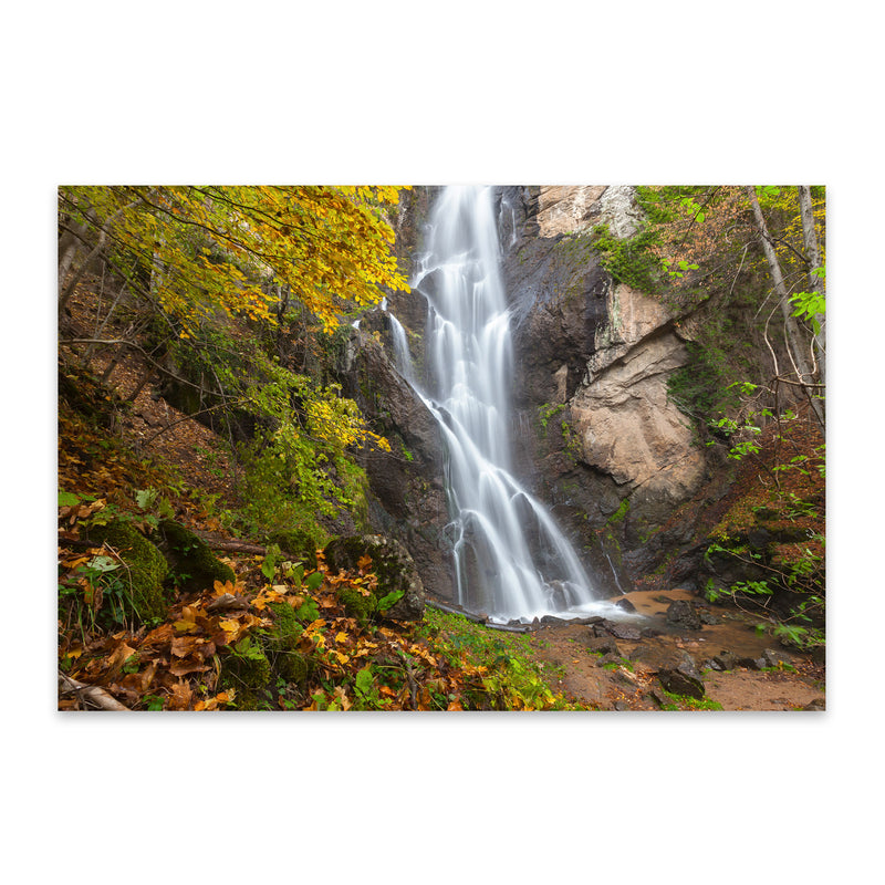 Bulgaria Autumn Forest Waterfall Metal Art Print