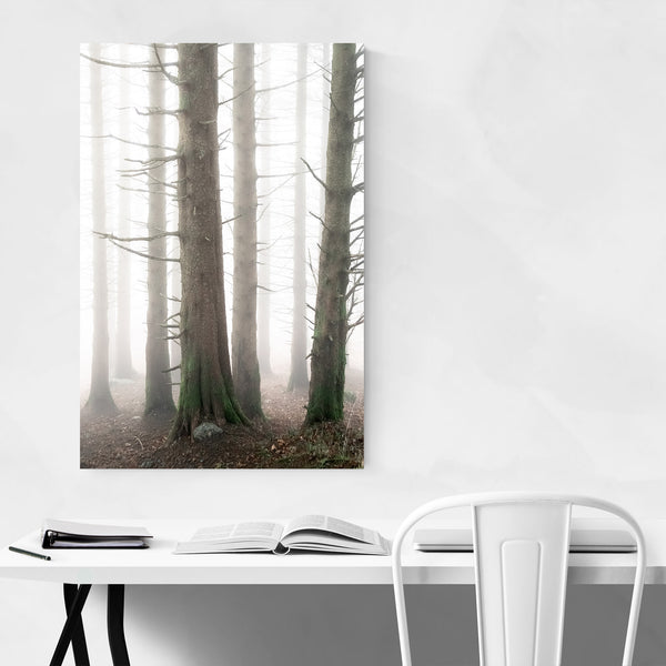 Norway Nature Forest Landscape Art Print