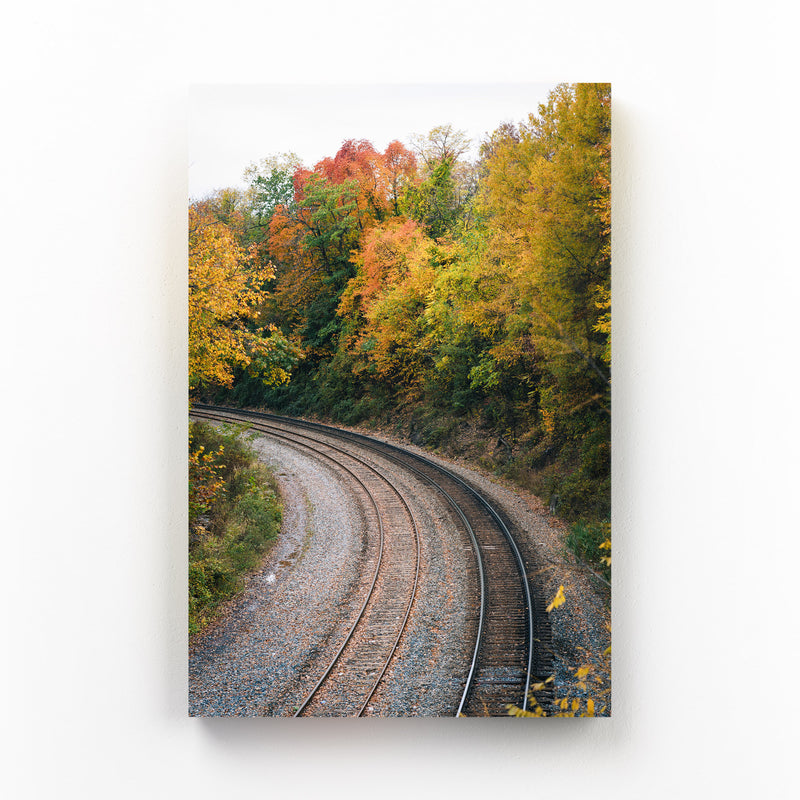Fall Color along Railroad Mounted Art Print
