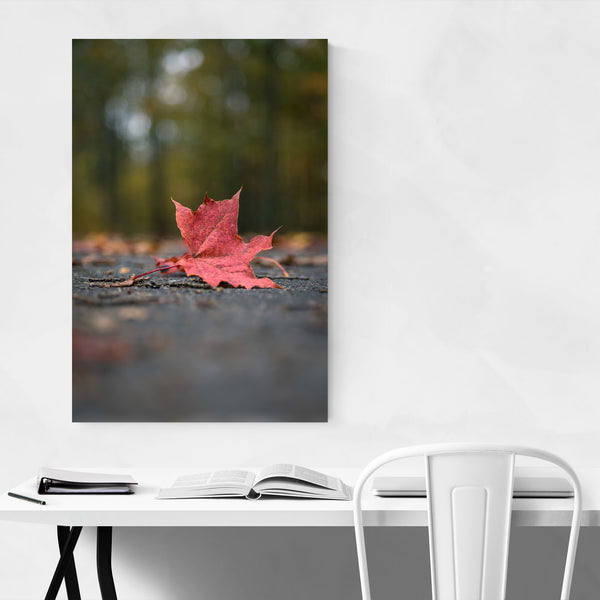 Autumn Fall Maple Leaf Nature Art Print