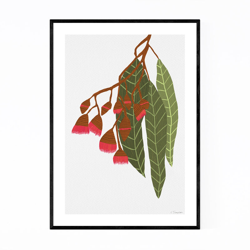 Floral Botanical Flowering Gum Framed Art Print