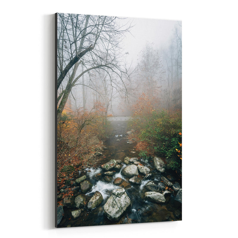 Virginia Autumn Fall River Canvas Art Print