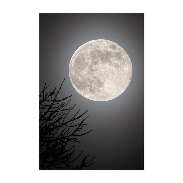 Full Moon Space Astronomy Sweden Art Print