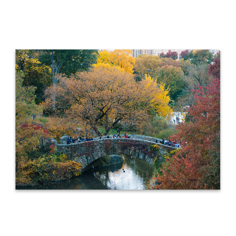 Central Park NYC New York Autumn Metal Art Print