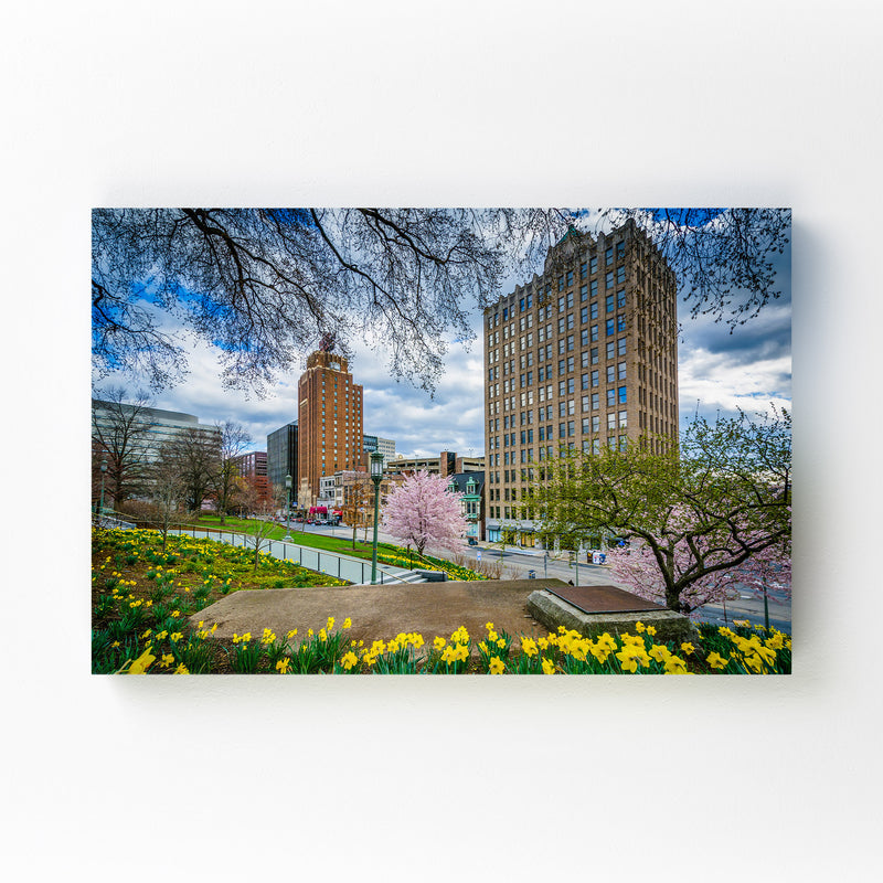 Downtown Harrisburg Pennsylvania Mounted Art Print