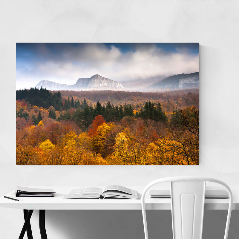 Bulgaria Autumn Forest Landscape Art Print