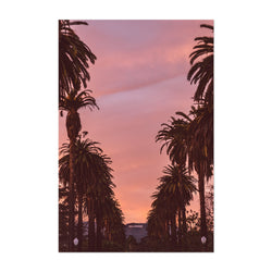 Hollywood Sign Sunset Palm Trees Art Print