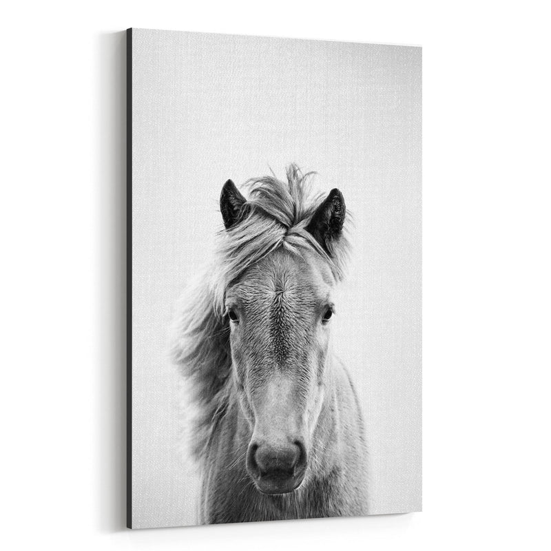 Horse Nursery Peeking Animal Canvas Art Print