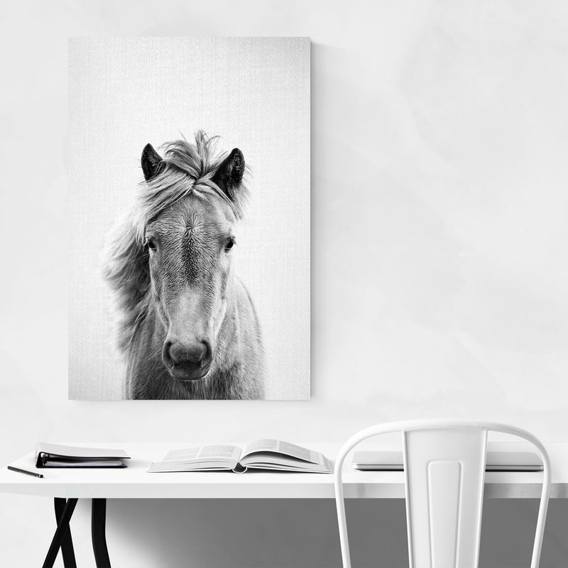 Horse Nursery Peeking Animal Metal Art Print