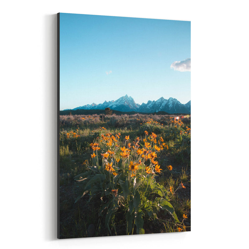 Grand Tetons Mountains Wyoming Canvas Art Print