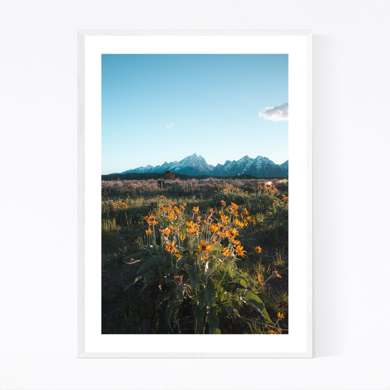 Grand Tetons Mountains Wyoming Framed Art Print