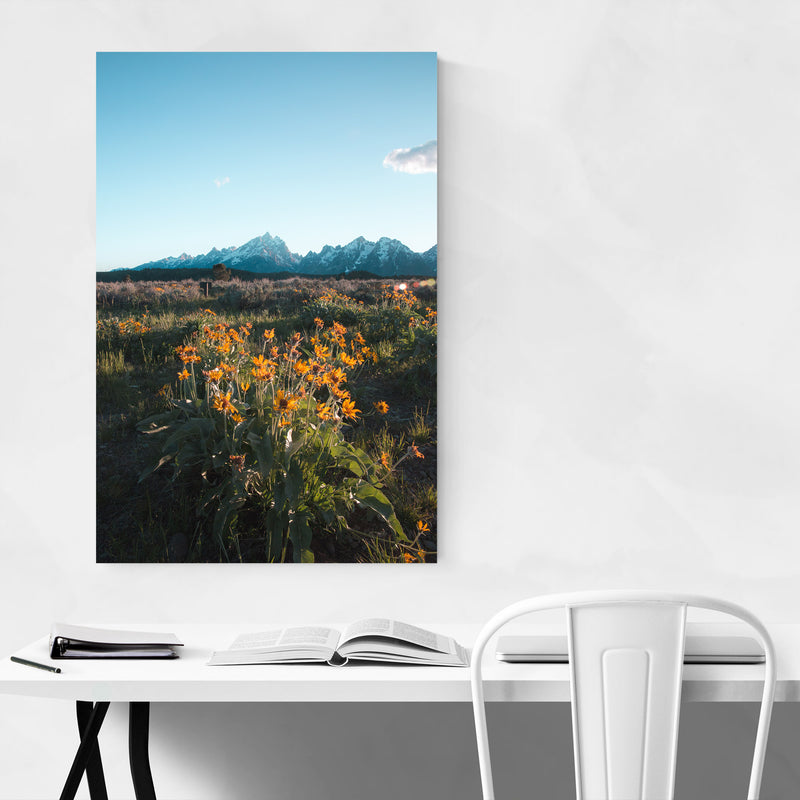Grand Tetons Mountains Wyoming Metal Art Print
