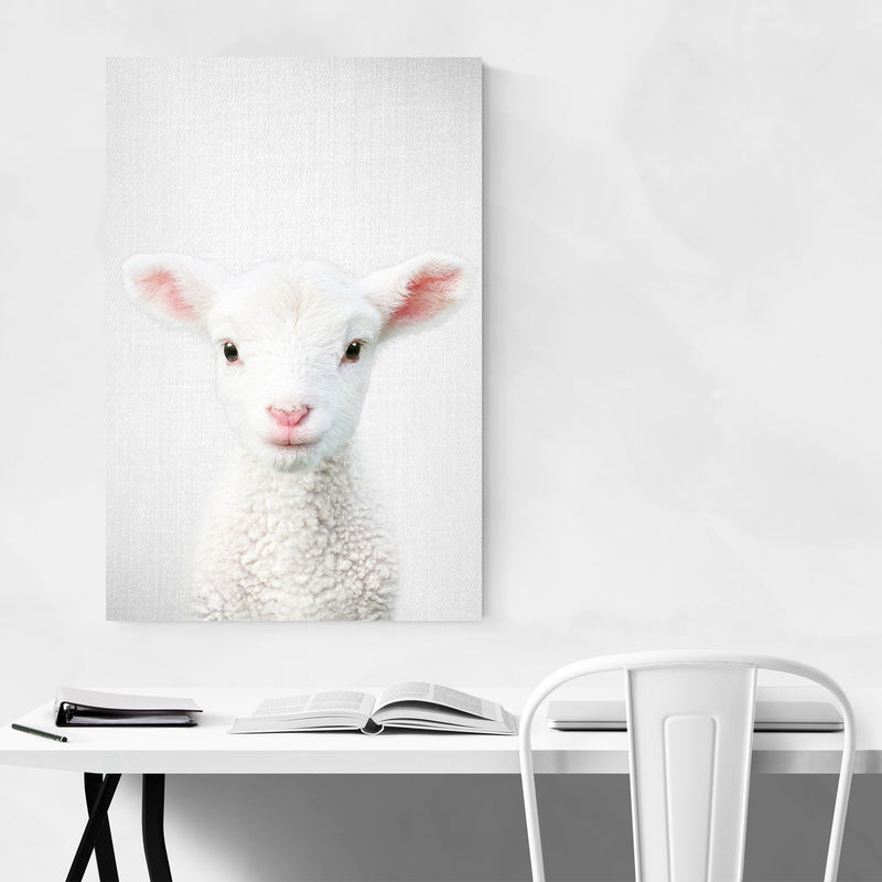 Cute Lamb Peeking Nursery Animal Canvas Art Print