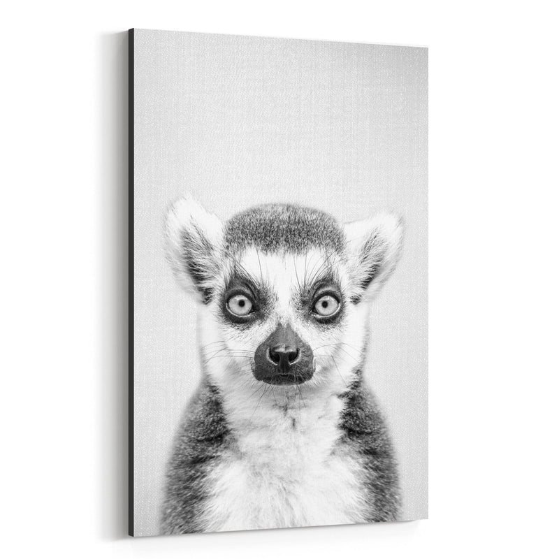 Lemur Peeking Nursery Animal Canvas Art Print