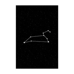 Night Sky Leo Astrology Zodiac Art Print