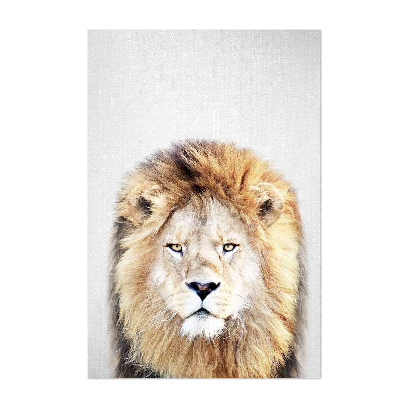 African Lion Peeking Nursery Art Print