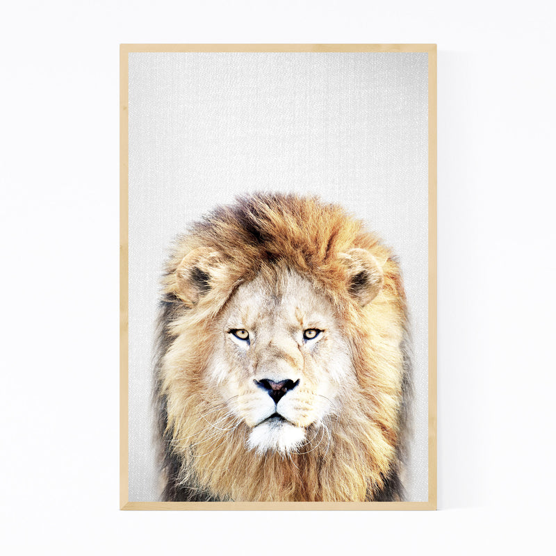 African Lion Peeking Nursery Framed Art Print
