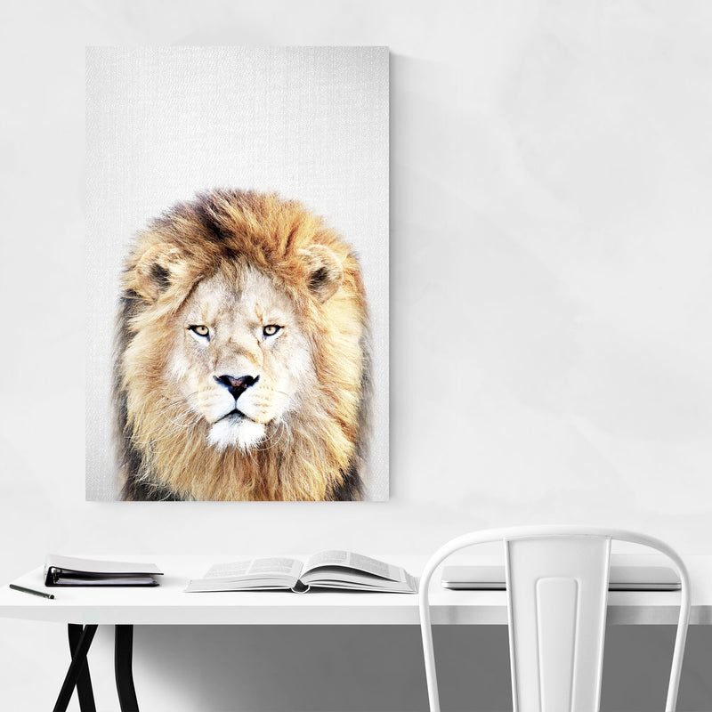 African Lion Peeking Nursery Metal Art Print