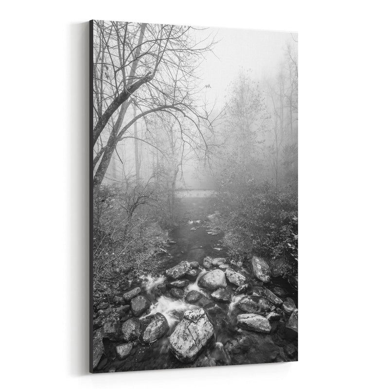 Black & White Blue Ridge Parkway Canvas Art Print