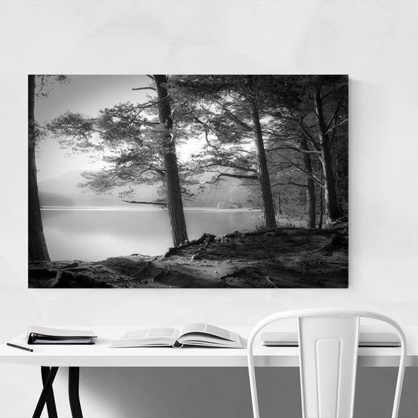 Forest Lake Nature Scotland Art Print