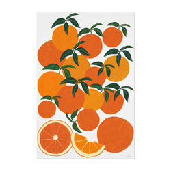 Orange Citrus Fruit Food Kitchen Art Print