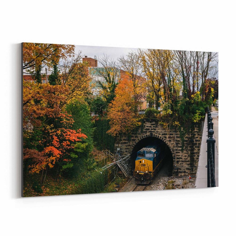 Railroad Fall Autumn Foliage Canvas Art Print