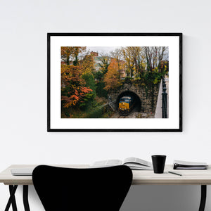 Railroad Fall Autumn Foliage Framed Art Print