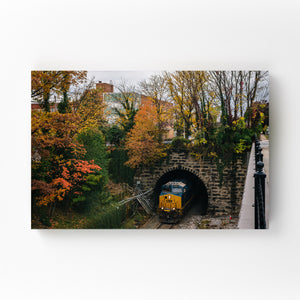 Railroad Fall Autumn Foliage Mounted Art Print